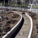 麻溝公園 風のガーデン 植栽作業4